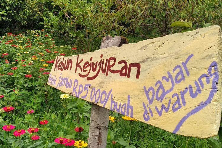 Pengunjung bisa memetik sendiri buah di Kebun kejujuran, Narmada Botanic Garden.