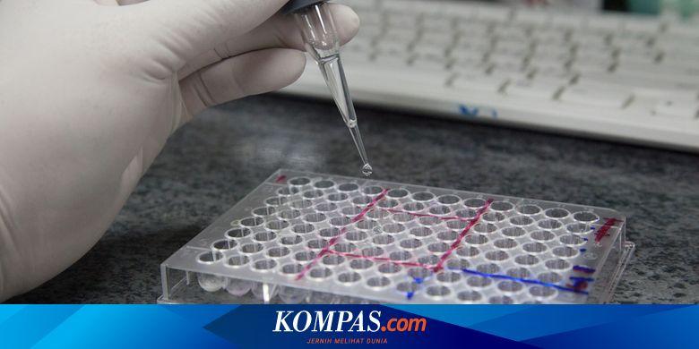 Setelah Rapid Test, Tes PCR Diperlukan untuk Pastikan Virus Corona