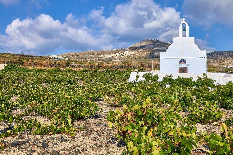 Ilustrasi Yunani - Sebuah gereja yang berada di tengah kebun anggur di Desa Megalochori.