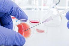Klinik Suntik Stem Cell Digerebek, Apa Itu Sel Punca?