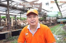 Mengintip Cuan dari Bisnis Peternakan Kambing dan Domba
