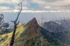 Pulang Berfoto di Gunung Piramid, Seorang Pelajar SMAN Terjatuh ke Tebing