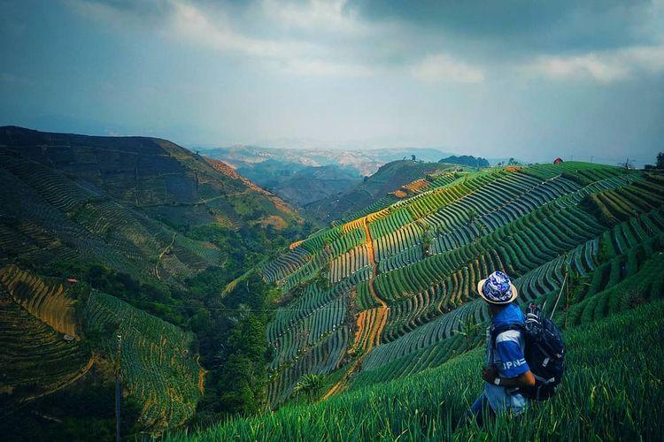 Pengunjung menikmati pemandangan Bukit Mercury Sayang Kaak dengan terasering, Kabupaten Majalengka, Jawa Barat.