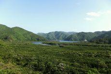 5 Hal Menarik untuk Dilakukan Saat Berlibur di Kepulauan Amami, Jepang