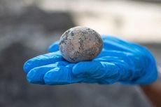 Peneliti Temukan Telur Ayam dengan Kondisi Utuh Berusia 1000 Tahun