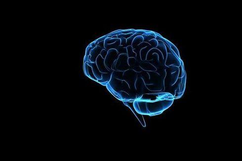 Ditemukan, Dampak Mutasi Gen Terkait Alzheimer dan Parkinson