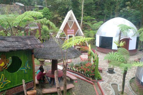 Ikuti Tren, Taman Wisata Alam Tangkuban Parahu Bikin Taman Buat
