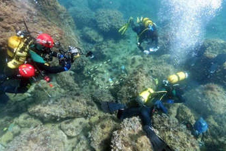 Para penyelam bebas amatir menemukan banyak koleksi koin emas Romawi di lepas pantai Spanyol.