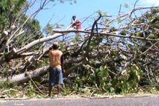 Antisipasi Cuaca Ekstrem di Musim Hujan, Ranting Pohon di Surabaya Dipangkas