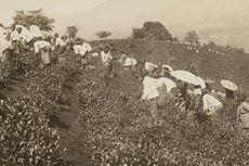 Sistem Ekonomi Liberal pada Masa Kolonial dan Kondisi Masyarakat