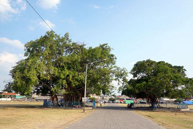 Alun-alun Kidul Kraton Surakarta, Jawa Tengah.