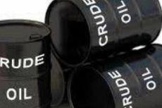 Target Produksi 1 Juta Barel Minyak, Menteri ESDM Tekankan Pentingnya Transformasi Hulu Migas