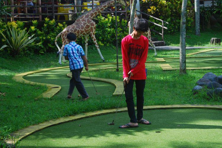 Seorang anak sedang bermain mini golf di Hotel Royal Safari Garden, Sabtu (23/12/2017).