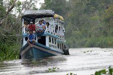 Travel Agent TN Tanjung Puting Terpaksa Jual Kelotok, Babak Belur Dihantam Pandemi