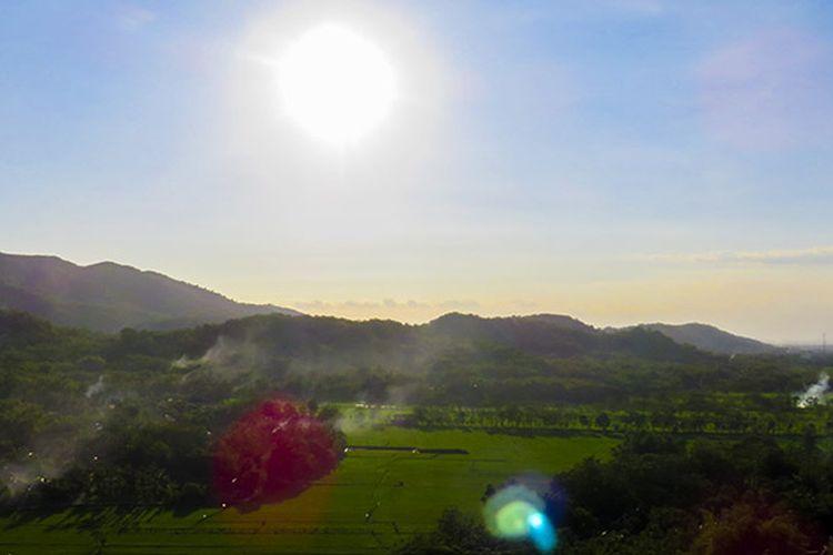 Panorama Khas dari Puncak Gunung Sepikul Berupa Hamparan Sawah bagai Permadani.