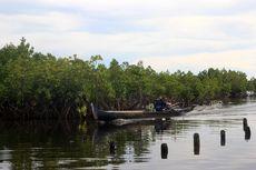 Buah Manis Usaha Suku Bajau Jaga Hutan Bakau untuk Anak Cucu