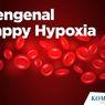 INFOGRAFIK: Mengenal Happy Hypoxia