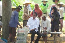 Jokowi Bawa Sekarung Daun Bawang Penuh Ulat dari Petani Brebes