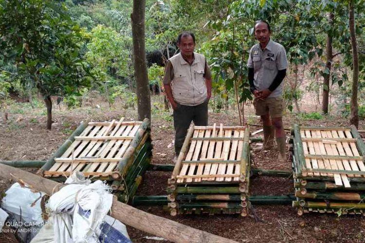Balai Besar KSDA Jawa Barat mengamankan 52 satwa liar jenis monyet di kawasan Gunung Golempang, Sumedang, Jawa Barat, Selasa (7/9/2021). Dok. Pengelola Agrowisata Gunung Golempang/KOMPAS.com