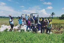 Dengan Alsintan, Petani Nabire Bisa Panen Raya di Tengah Pandemi