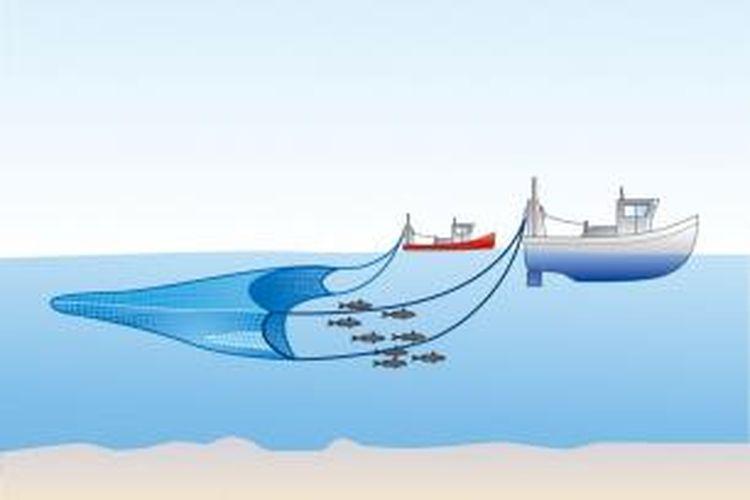 Ilustrasi pukat hela (trawl).