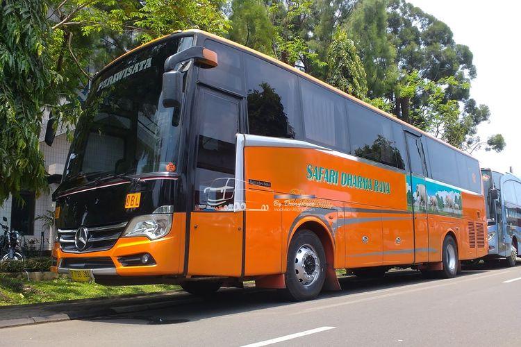 Bus Safari Dharma Raya Adiputro Tourismo