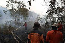 Kabut Asap Selimuti Kota Dumai, Jarak Pandang 2 Kilometer