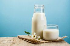 Susu Organik, Cara Jitu Penuhi Kebutuhan Susu Bernutrisi dan Ramah Lingkungan