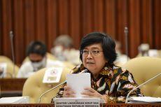 Menteri LHK: 637.000 Hektar Lahan Gambut dan Mangrove di 9 Provinsi Kritis