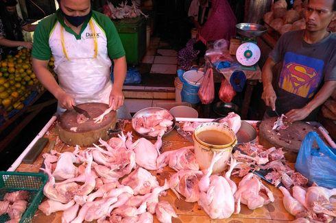 Harga Ayam Melonjak Jadi Rp 42.000 Per Kg, Stok di Medan Didatangkan dari Pekanbaru