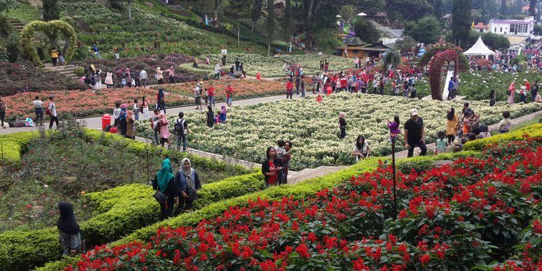 Sejumlah wisatawan saat menikmati kebun bunga di lokasi wisata Selecta, Kota Batu, Jawa Timur, Minggu (16/7/2017)