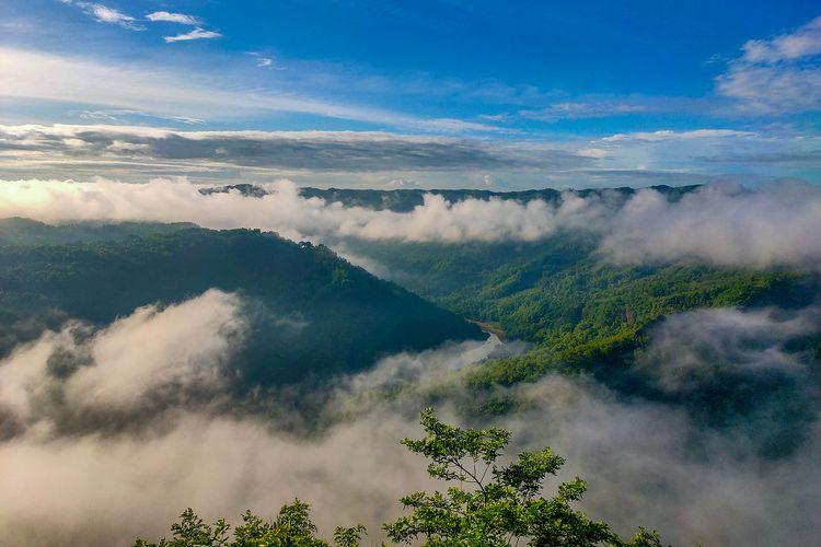 Keindahan pemandangan di Kebun Buah Mangunan Yogyakarta, bagai negeri di atas awan.