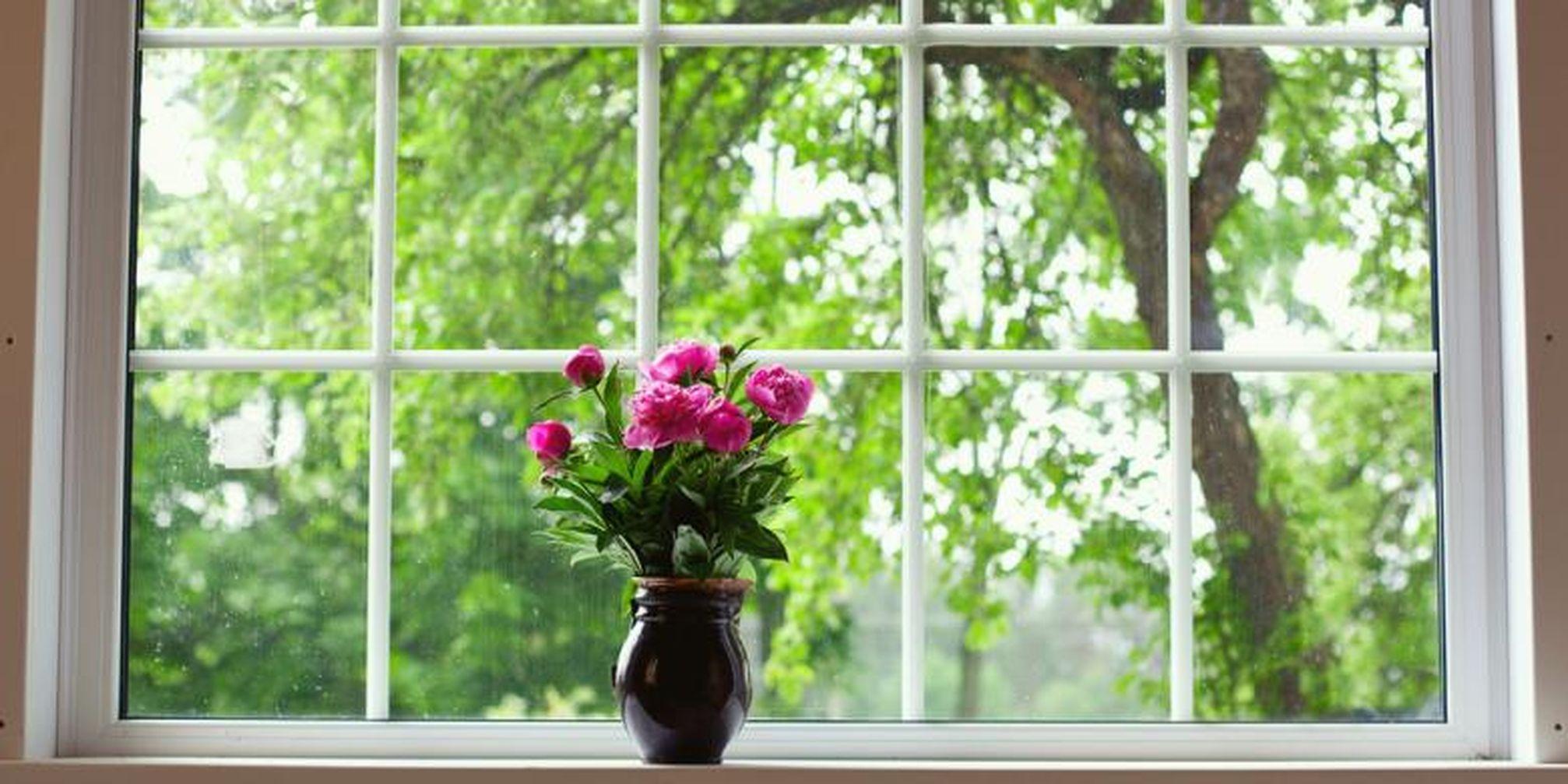 Ingat Jendela Bersih Bikin Anda Lebih Bersemangat