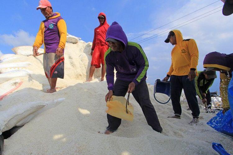 Sejumlah pekerja mengumpulkan garam ke dalam karung di Desa Luwunggeusik, Krangkeng, Indramayu, Jawa Barat, Senin (22/3/2021). Pemerintah akan membuka kembali keran impor garam sebanyak tiga juta ton pada tahun ini karena kuantitas dan kualitas garam lokal yang dinilai masih di bawah standar kebutuhan industri.