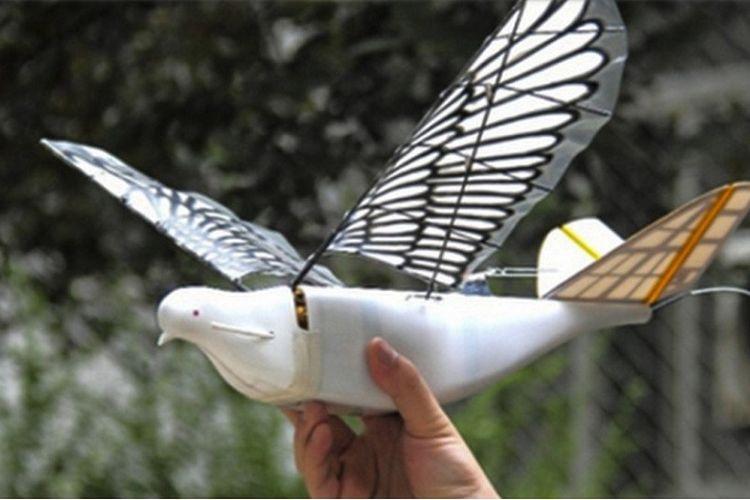 Drone burung yang diciptakan di China.