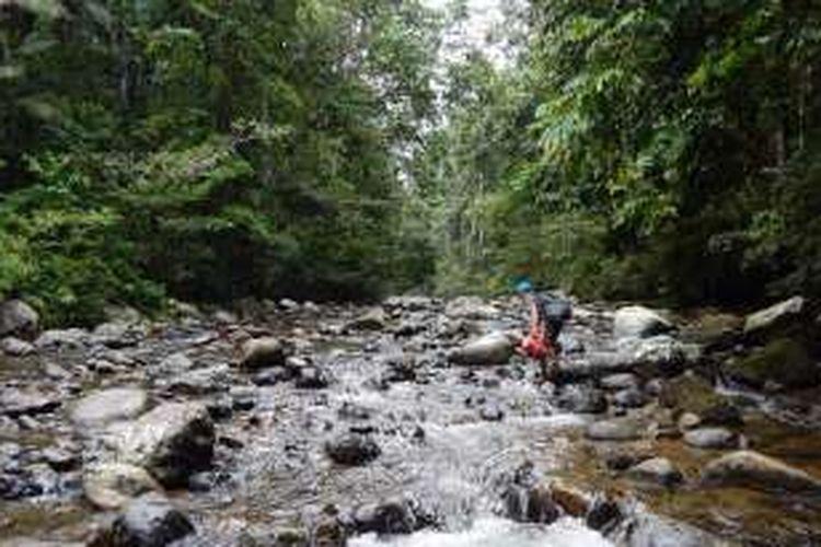 Perjalanan Ekspedisi Orang Polahi yang dilakukan oleh Marahalim Siagian, antropolog Burung Indonesia di hutan suaka margasatwa Nantu, Gorontalo.