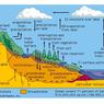 Air Permukaan: Bentuk, Macam, dan Fungsinya