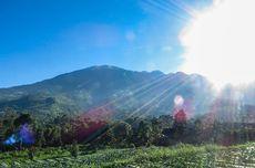 Siap-siap, Jalur Pendakian Gunung Merbabu Kembali Dibuka 21 Juni 2019