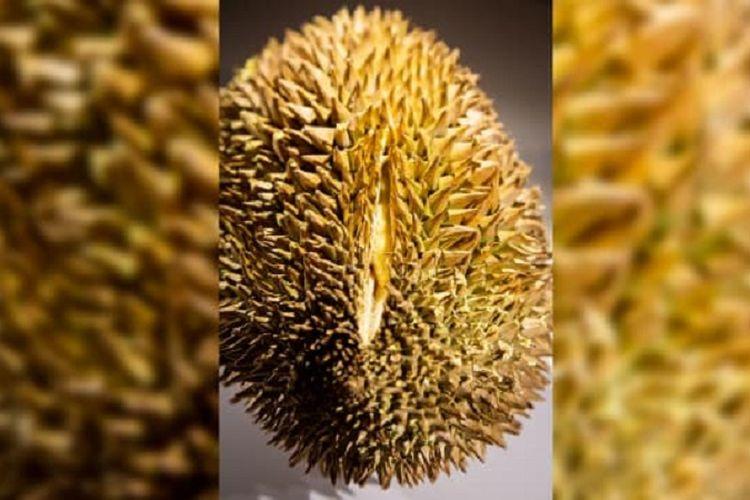 Durian, salah satu makanan yang dipamerkan di Museum Makanan Menjijikkan di Malmo, Swedia.