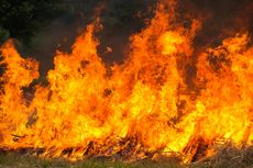 Kantor Penyelenggara Pernikahan Terbakar, Seorang Pegawai Tewas