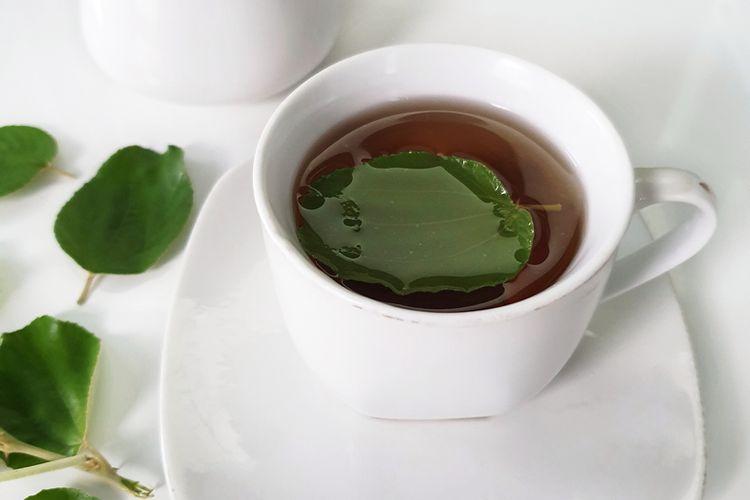 Ilustrasi teh herbal dari daun tanaman.