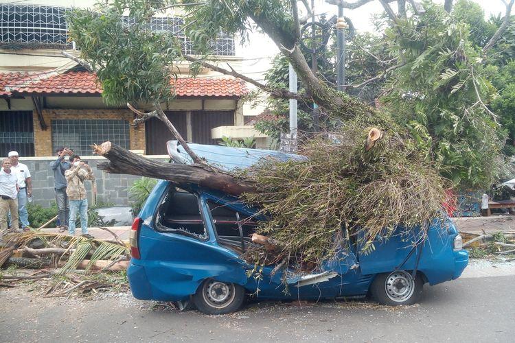 Sebuah angkot di Kabupaten Cianjur, Jawa Barat, ringsek akibat tertimpa pohon tumbang, Sabtu (16/1/2021) sore. Sang sopir selamat namun mengalami luka.