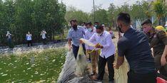 Tingkatkan Produksi Perikanan Budidaya, Balai Riset KP dan Politeknik AUP Ciptakan Prototipe Pembekuan Udang