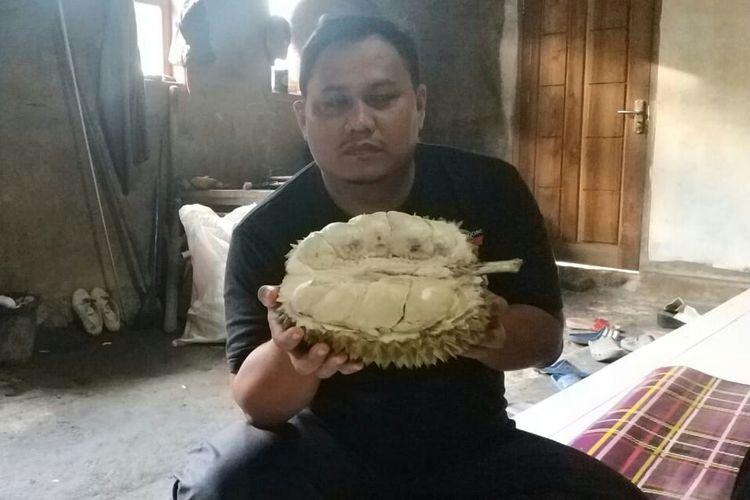 Pegiat Pangan Lokal Lebak, Wandi S Assayid menunjukkan jenis durian jumbo Bungbulang, Jumat (11/1/2019). Jenis Bungbulang merupakan durian unggul yang bisa mencapai bobot 12 kilogram.