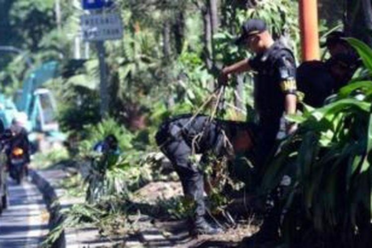 Kondisi taman di sepanjang jalan Darmo Surabaya yang rusak terinjak-injak warga, Minggu (10/5/2014).