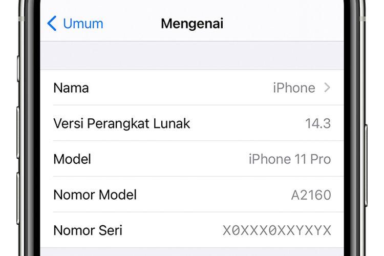 Ilustrasi nomor IMEI beserta informasi lain yang tertera pada perangkat iPhone.