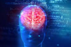 Mengenal Pendarahan Otak, Kondisi Medis yang Dialami Tukul Arwana