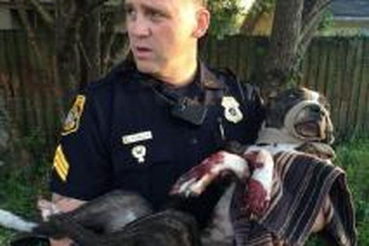 Polisi Tampa, Sersan Rich Mills mengendong Cabela setelah anjing itu diselamatkan dari sebuah rel kereta api pada Rabu (4/3/2015).