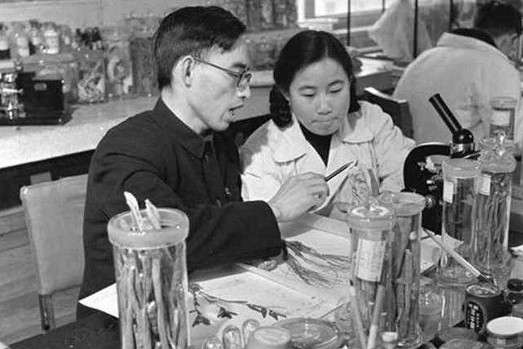 Penemu obat malaria artemisinin, Tu Youyou (kanan) dan tutornya Lou Zhicen China Academy of Chinese Medical Sciences tahun 1950-an. Tu Youyou berhasil menemukan obat malaria baru dari catatan ramuan obat tradisional kuno China.