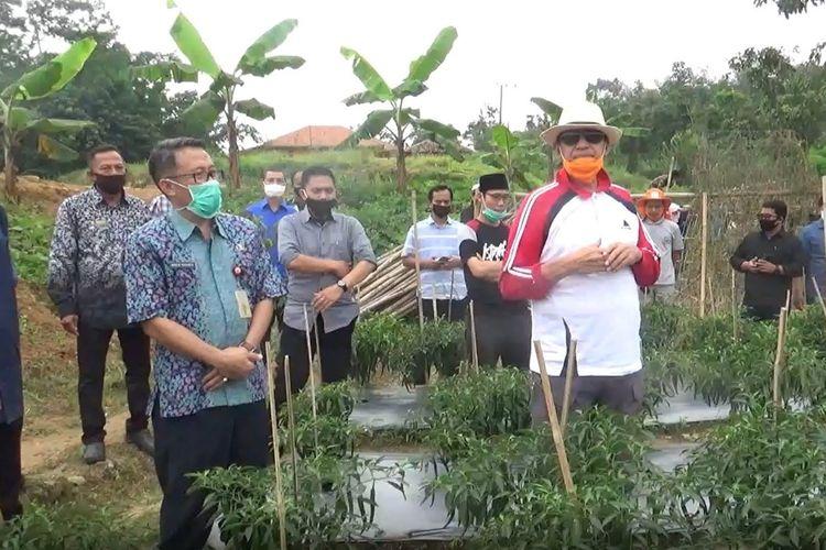 Gubernur Banten saat meninjau lahan pertanian di Kecamatan Sajira, Kabupaten Lebak, Banten, Kamis (2/7/2020).
